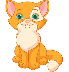 Red kitten vector