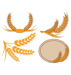 ear of wheat in a wreath vector image vector image