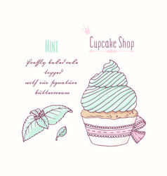 hand drawn cupcake mint flavor vector image