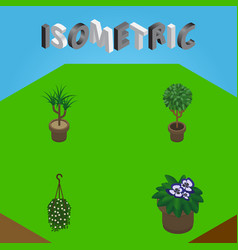 Isometric flower set of tree flowerpot blossom vector