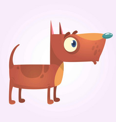 cartoon brown pitbull dog mascot vector image
