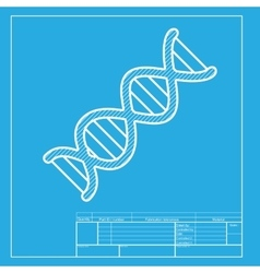 The dna sign white section of icon on blueprint vector
