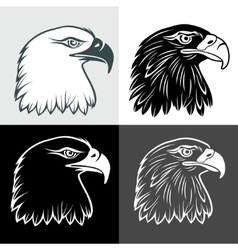 Eagle head vector