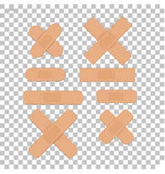 isolated medical plaster vector image