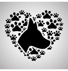 Pet shop design animal icon care concept vector