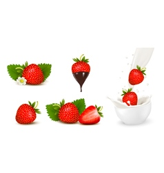 Set of ripe sweet strawberry and flower with vector