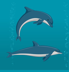 Cartoon dolphins in different poses vector