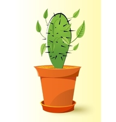 Cactus plant in a pot vector