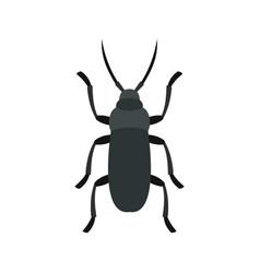 Gray bug icon flat style vector