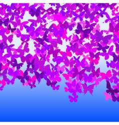 Butterfly sky vector