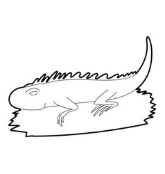 Iguana icon outline style vector