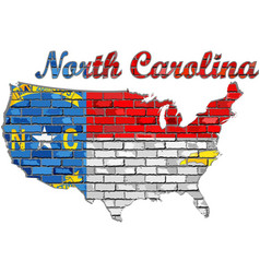 North carolina on a brick wall vector