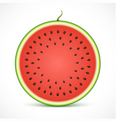 Watermelon texture background with seeds vector