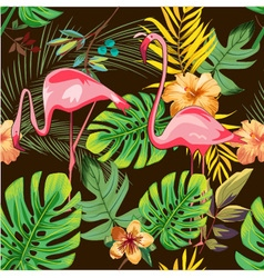 Exotic flamingo patter background design vector