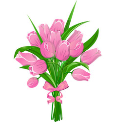 Pink tulips with ribbon vector