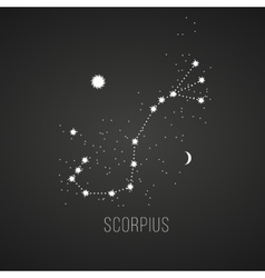 Astrology sign scorpius on chalkboard background vector