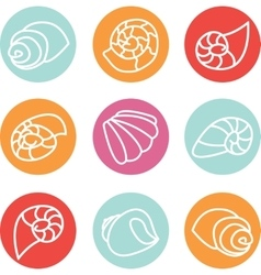 Set of colorful shell icons vector