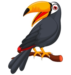 Cute cartoon toucan bird vector