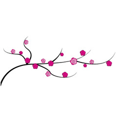 cherry twig with flowers vector image