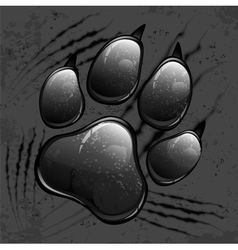 paw pattern v vector image