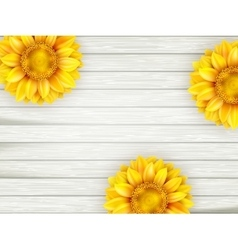 Sunflowers on wooden background eps 10 vector