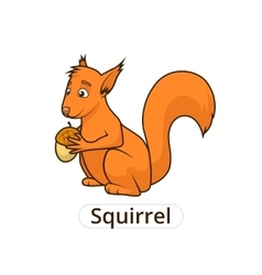 Forest animal squirrel cartoon for children vector