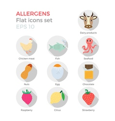 Allergens flat icons set vector