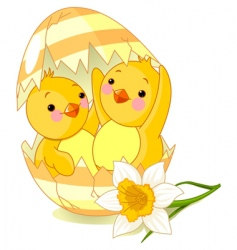 chickens and egg vector image