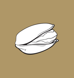 Single pistachio nut hand drawn isolated sketch vector