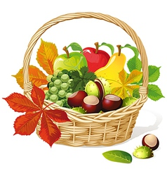 Basket with autumn fruit and vegetables vector