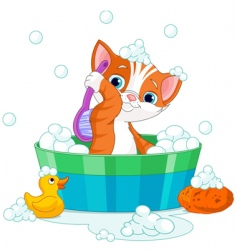 Cat having a bath vector