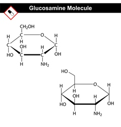 Glucosamine structure vector image vector image