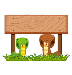 wooden sign template with two snakes underneath vector image