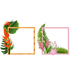 two frame design with flowers and leaves vector image