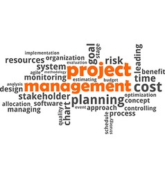 word cloud project management vector image