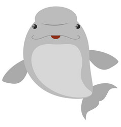 Beluga whale on white background vector