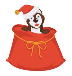 husky in christmas hat sits inside huge bag for vector image vector image