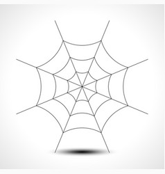 Spider web isolated on white background vector