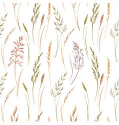 wild field grass pattern vector image vector image