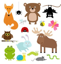 Forest animal insect set bear hare fox moose owl vector