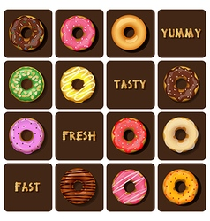 Collection of colorful doughnuts vector