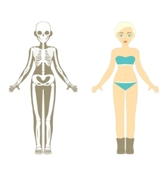 Female body human skeleton system vector