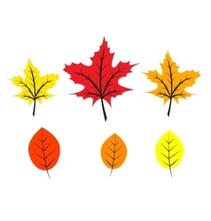 autumn flat leaves vector image vector image