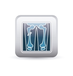 X-rays inside frame design vector