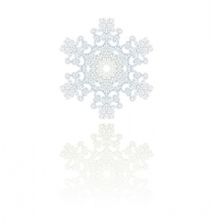 snowflake ornament vector image