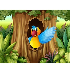 A bird in a tree hollow vector