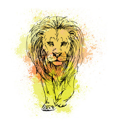 sketch by pen of a lion head on a background of vector image
