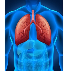 Lung cancer in human vector