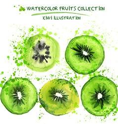 Watercolor kiwi set vector image vector image