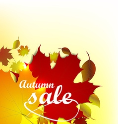 Autumn sale background with leaves vector image vector image